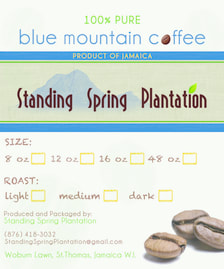 Standing Spring Plantation Jamaican Coffee